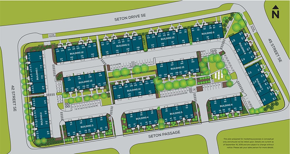Designer Townhomes at Seton by Rohit Communities